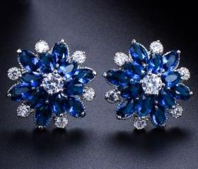 Navy Blue Earrings C..