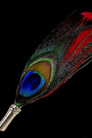 Men and Women Natural Peacock Feather Pin Brooch Peacock Brooch Wedding Prom Pin